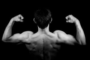 mave og rygtræner kettler